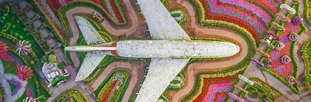 Le Dubai Miracle Garden , le plus grand jardin au monde